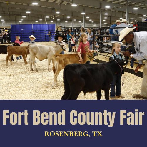 Fort Bend County Fair Texas USA