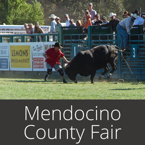 Mendocino County Fair and Apple Show